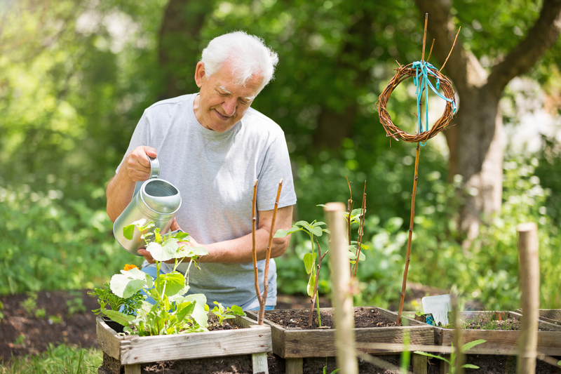 An image of an elderly man looking after some plants
